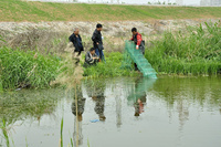 宝鸡市水产站开展渔业种质资源普查